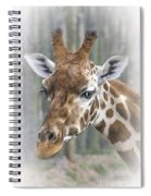Wildlife Giraffe  Spiral Notebook