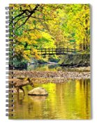 Wildlifes Thirst Spiral Notebook