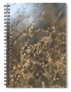 Will O Wisps Spiral Notebook