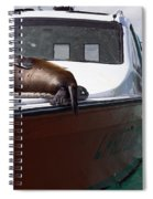 Will Sleep Anywhere Spiral Notebook
