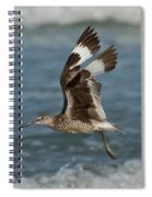 Willet In Flight Showing Wing Molt Spiral Notebook