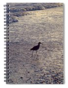 Willet In The Waves Spiral Notebook