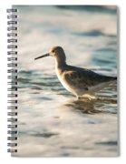 Willet Wading Through The Ocean Foam Spiral Notebook