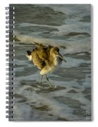 Willet Washing 1 Spiral Notebook