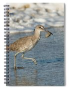 Willet With Sand Crab Spiral Notebook