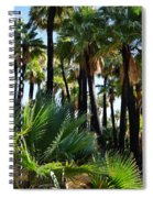 Willis Palm Oasis Spiral Notebook