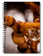Willow Drops Spiral Notebook