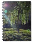 Willow Magic Spiral Notebook