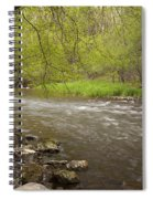 Willow River 3 Spiral Notebook