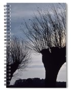 Willow Trees In Winter Spiral Notebook