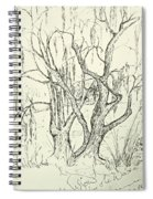Willows By The Lake Spiral Notebook