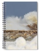 Wind And Ice Spiral Notebook