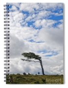 Wind-bent Flag Tree In Tierra Del Fuego Spiral Notebook