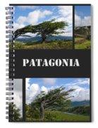 Wind-bent Flag Trees In Tierra Del Fuego Spiral Notebook