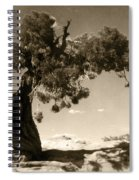 Wind Swept Tree Spiral Notebook