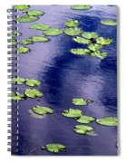 Wind Whirling The Lake Spiral Notebook