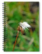 Winded White Spiral Notebook