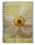 Windflower Textures Spiral Notebook