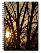 Winding Down The Evening Spiral Notebook