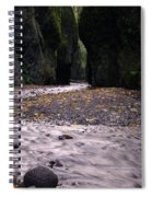 Winding Through Oneonta  Gorge Spiral Notebook