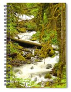 Winding Through The Forest Spiral Notebook