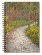 Winding Woods Walk Spiral Notebook