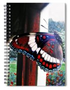 Window To My World Spiral Notebook