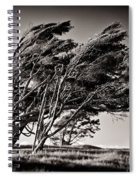 Windswept Spiral Notebook