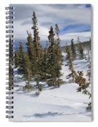 Windswept Terrain Spiral Notebook