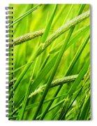 Windy Green Spiral Notebook