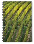 Wine Acreage In Germany Spiral Notebook