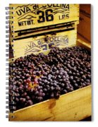 Wine Grapes II Spiral Notebook