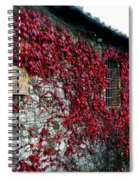 Winery Ivy Spiral Notebook