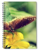 Wing Check Spiral Notebook