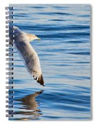 Wing Dipping Spiral Notebook