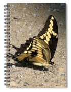 Winged Delight Spiral Notebook