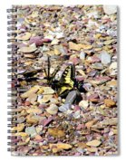 Winged Trio Spiral Notebook