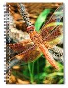 Winged Wonder Spiral Notebook