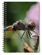 Wings Forward Spiral Notebook