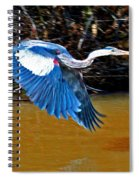 Wings In Flight Spiral Notebook
