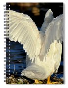 Wings Of A White Duck Spiral Notebook