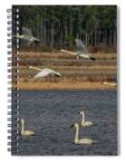 Wings Over Water 2 Spiral Notebook