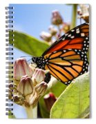 Wings Up Monarch Butterfly By Diana Sainz Spiral Notebook