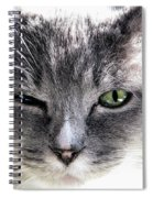 Wink Spiral Notebook
