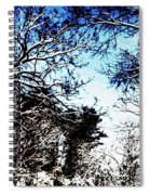 Winter Along The Bronx River Spiral Notebook