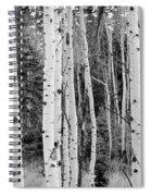 Winter Approaches Spiral Notebook