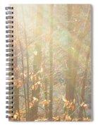 Winter Arbor Light Spiral Notebook