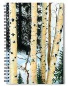 Winter Aspens Spiral Notebook
