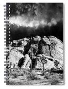 Winter At Joshua Tree Spiral Notebook