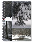 Winter At Petrifying Springs Park Spiral Notebook